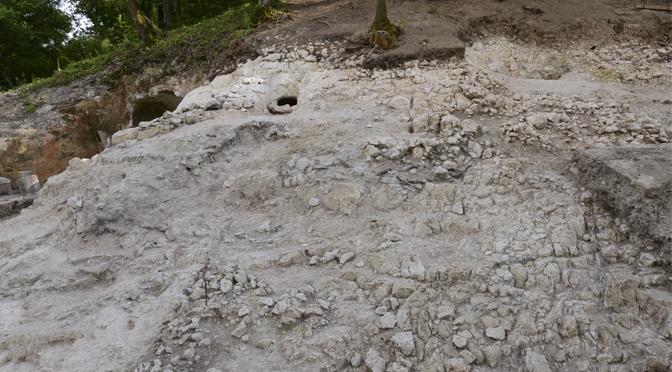 """Vert-la-Gravelle (Vert-Toulon) """"La Crayère"""" (Marne). Campagne de fouilles 2015"""