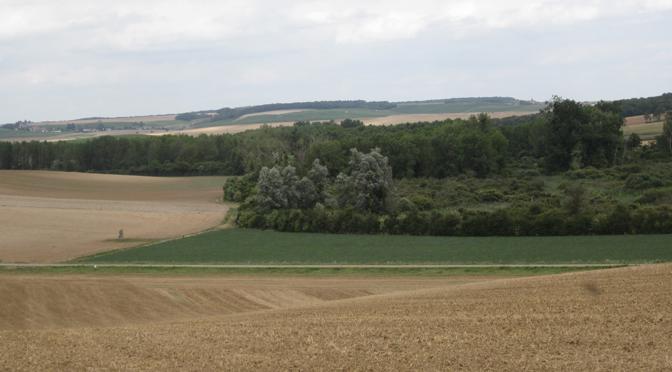 Le Néolithique des marais de Saint-Gond (Marne, France). Études spatiales et paléoenvironnementales pour la reconstitution du territoire et des dynamiques d'anthropisation
