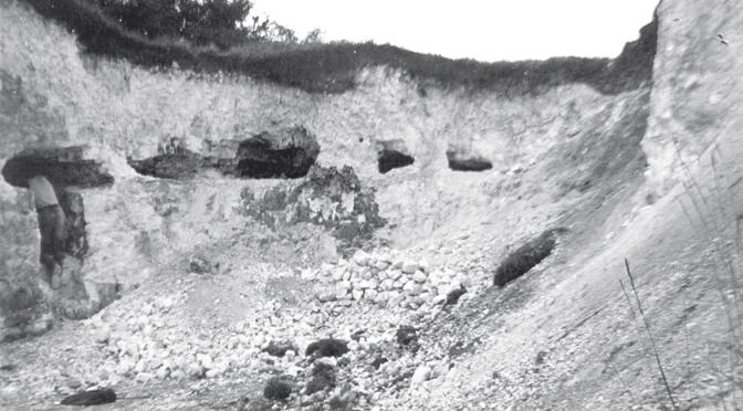 Les minières de silex néolithiques des marais de Saint-Gond (Marne)